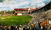 Adelaide Oval - a Century of Cricket